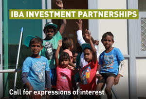 IBA investment partnerships