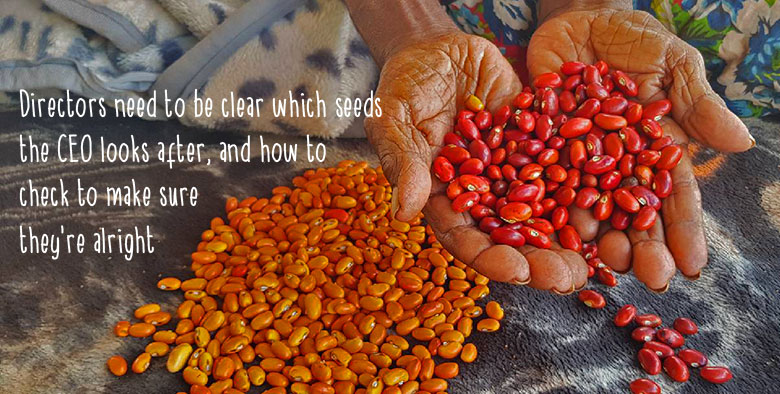 "Directors need to be clear which seeds the CEO looks after, and how to check to make sure they're alright"" text overlaid on a photo of an Aboriginal woman's hands holding out a pile of red seeds; orange seeds are on the ground before her."