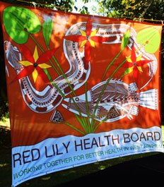 Red Lily Health Board Banner