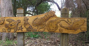 Sea tucker carving—one of eight carvings along the bush tucker trail. Guriwal Aboriginal Corporation contracted Christopher Lyons, a local Aboriginal artist, to teach students from Matraville Sports High School the techniques of wood carving and burning. Their combined work resulted in this carving depicting local food from the sea.
