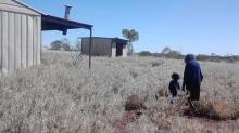 Elder walking with child through grassland past metal shelter